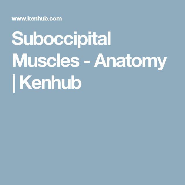 Anatomy homework help