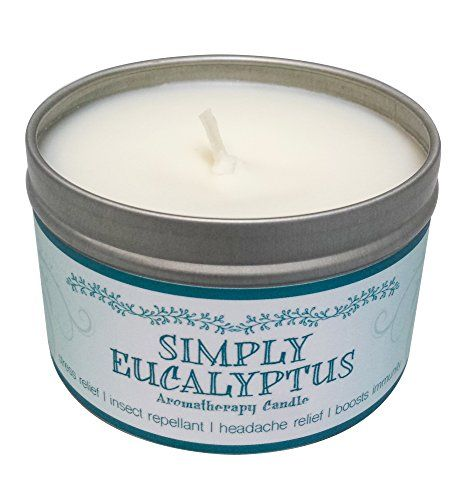 Our Own Candle Company Soy Wax Aromatherapy Scented Candle Simply Eucalyptus 6.5 Ounce