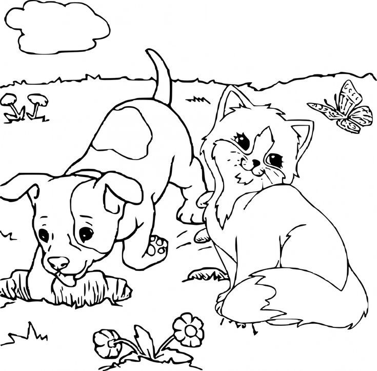 Best 25 chien coloriage ideas on pinterest medor - Dessin de chat et de chien ...