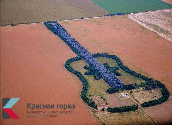 Лес в форме гитары в Испании. Всегда удивляет пилотов и пассажиров самолетов.