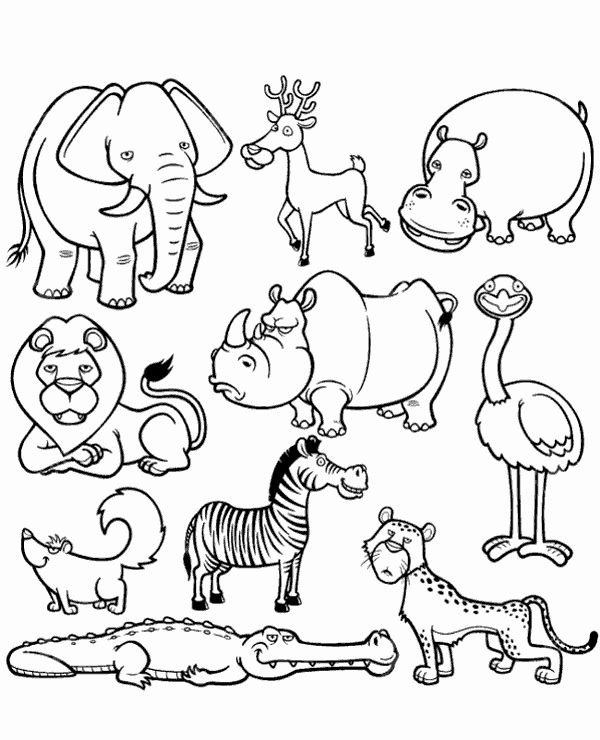 African Animals Coloring Pages Elegant High Quality Picture Of African Animals To Color To Animal Coloring Pages Zoo Animal Coloring Pages Wild Animals Drawing