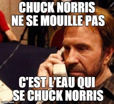 Top 21 des meilleures blagues sur Chuck Norris | Page 6
