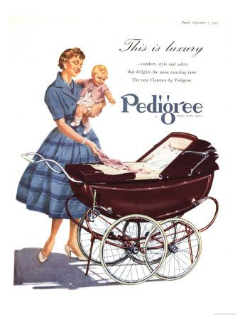 1950 ad for Pedigree prams.