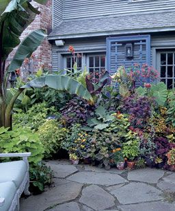Staging A Container Plant Display   Fine Gardening Article