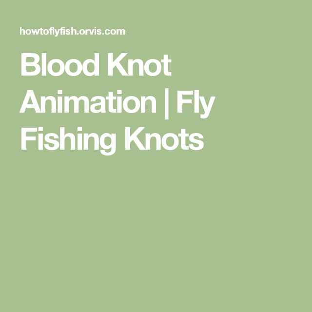 15587 best fishing lures images on pinterest fishing for Blood knot fishing