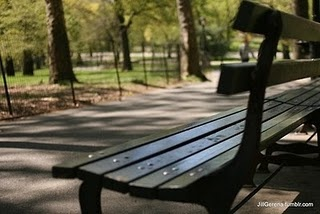 a park bench in NYC...wishing I was there right now