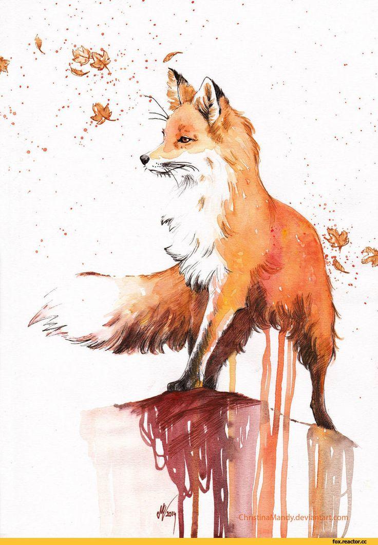 art,арт,красивые картинки,Лиса,лис, лисы, лиска,Лиса арт