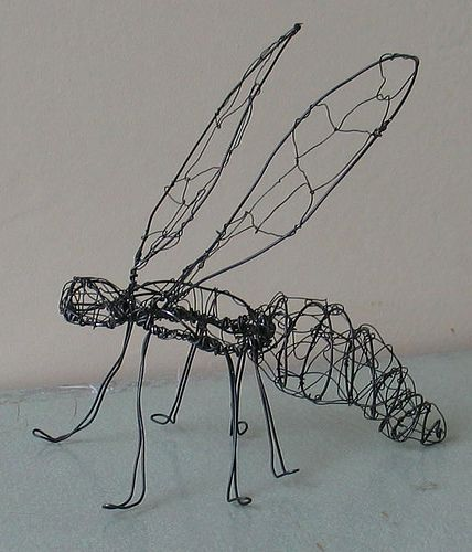 Insect Pre-Gut by perpetualplum,