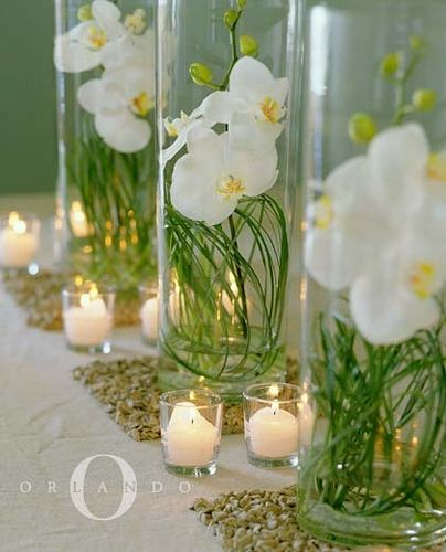 Simple white orchid table centerpieces with adjacent