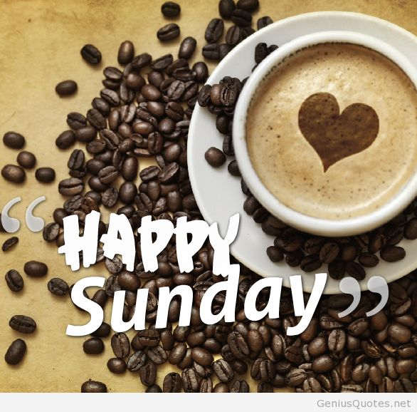 Good Morning/Afternoon/Evening Everyone ,, Have a safe and blessed Sunday <3