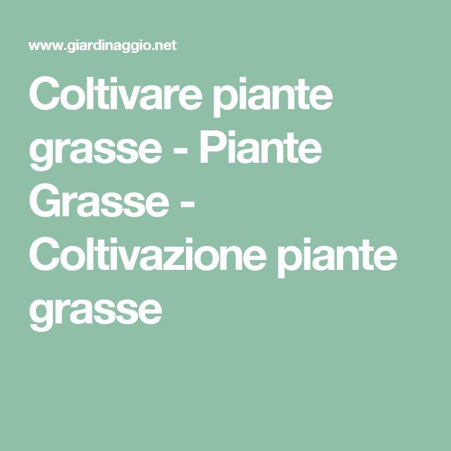 Coltivare piante grasse - Piante Grasse - Coltivazione piante grasse