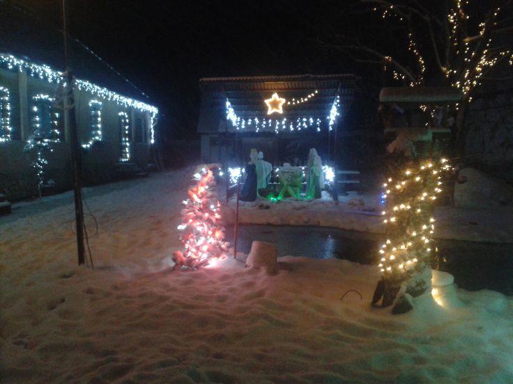 Tavam karácsonykor1
