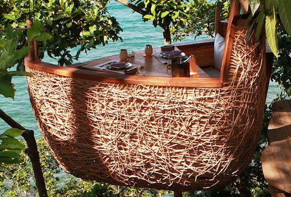In a birds nest in Thailand.  Oh, and the waiters deliver the food by zip lining to the table.