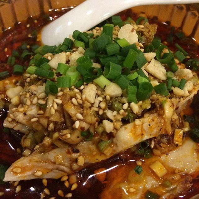 新宿で四川料理といえば、ここ! この口香鶏(よだれ鶏)が、超絶美味い! 下に隠れてる茄子と一緒に食べると( ´ ▽ ` ) #口香鶏 #よだれ鶏 #中華料理 #四川料理 #instafood #foodie #foodpics #yummy