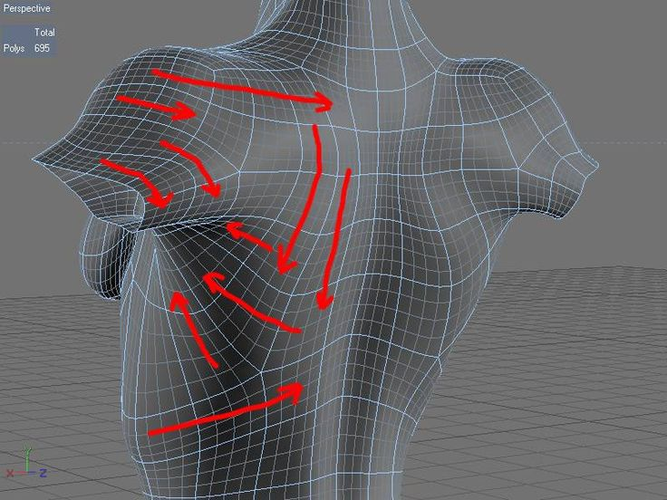 Animation-friendly character topology