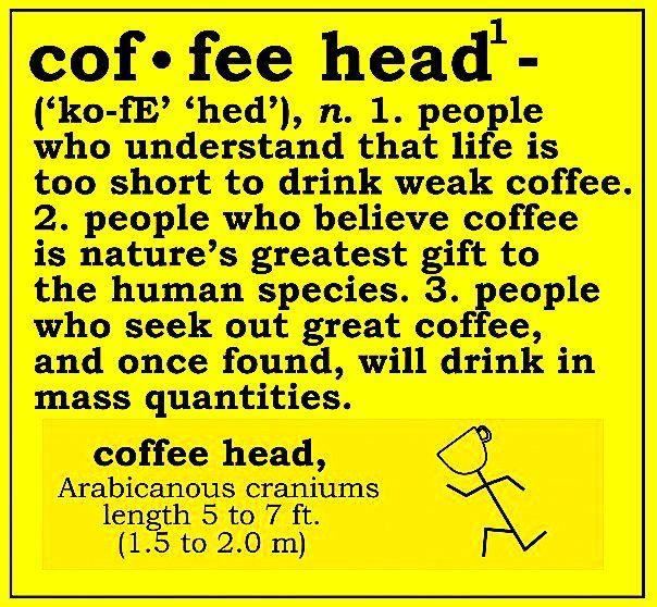 Definition of a Cof-fee head -