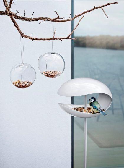 Tijdens de koudere dagen hebben de vogels moeite om voedsel te vinden.