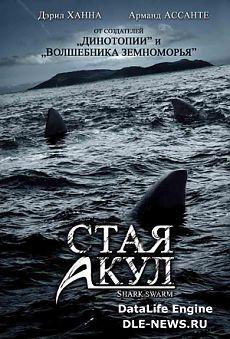 Смотреть онлайн Стая акул (ТВ) в хорошем качестве без регистрации.