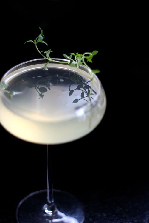 LEMON THYME & CHAMPAGNE COCKTAIL — JOHN WHAITE