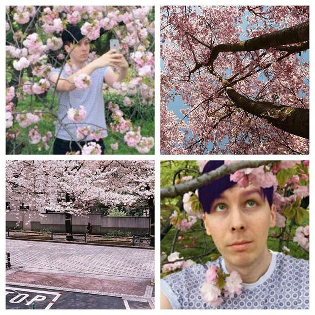 phil is the definition of aesthetic - Cat