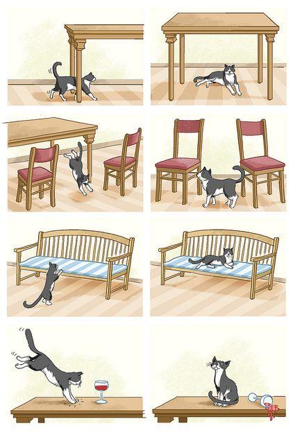 Waar is de kat, voorzetsels