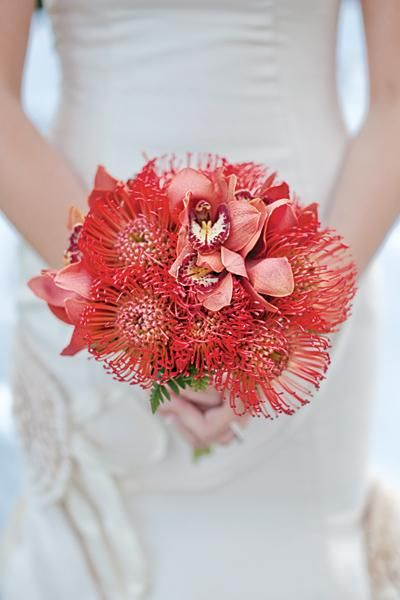 Funky red bouquet with pincushion proteas and orchids