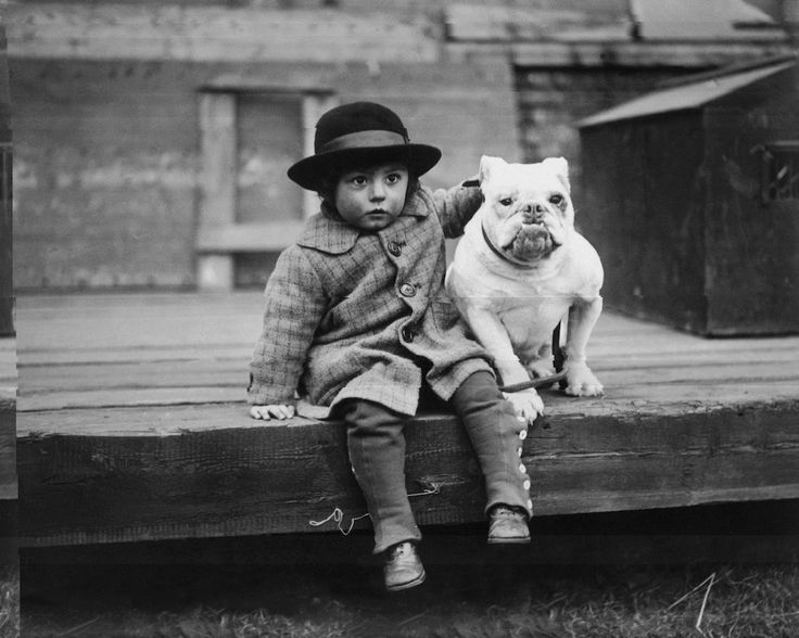 Bulldog in mostra, 1926. Crystal Palace, London (Kirby/Topical Press Agency/Getty Images)