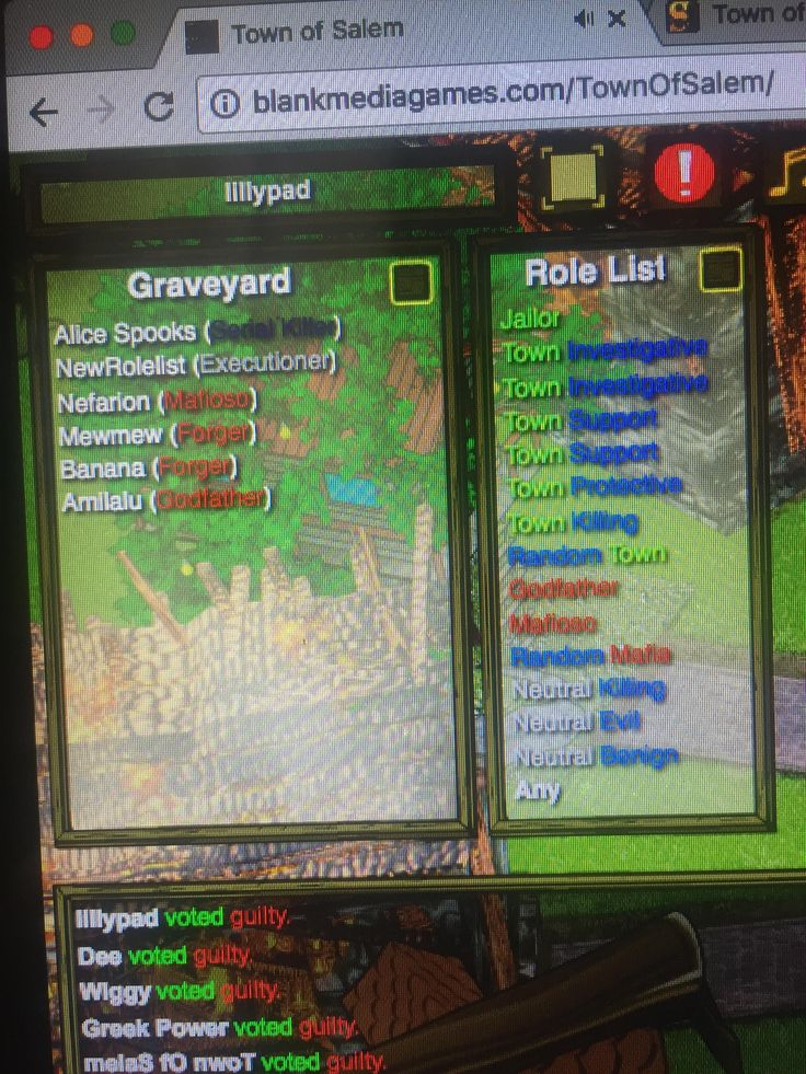 This happened at a round of Town of Salem I was playing. Go town!