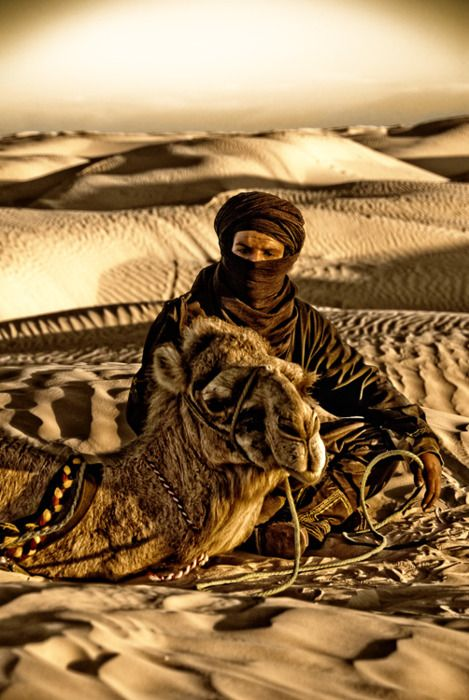 Bedouin man and his camel