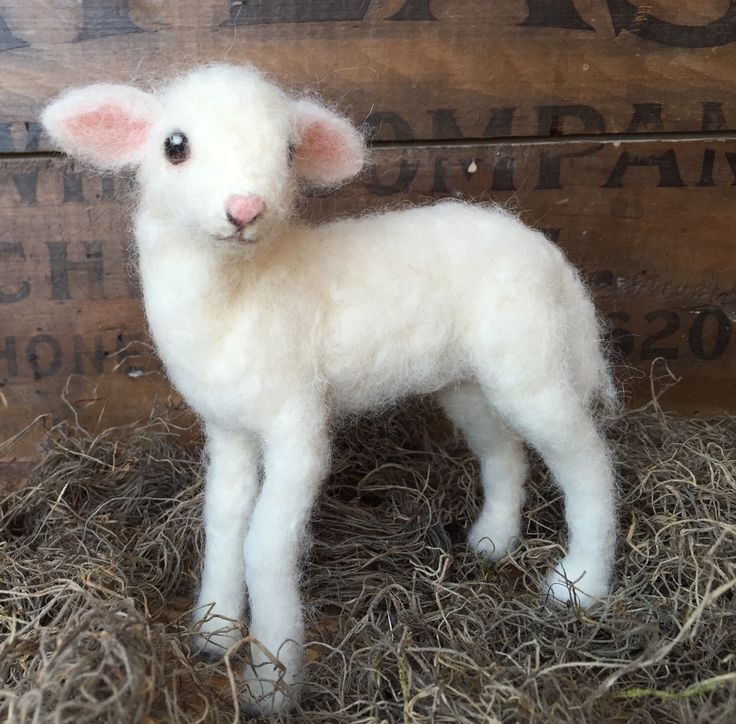 Needle felted baby lamb by needle felt artist Claudia Marie