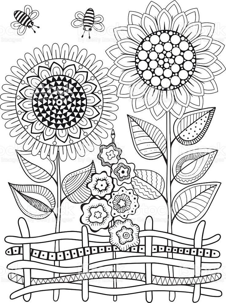 Vector doodle sunflowers. Coloring book for adult. Summer