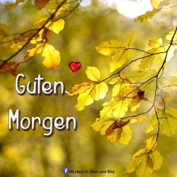 おはよございます. Guten Morgen, Schatz. Gut geschlafen, Daizo?☀