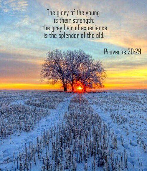 Proverbs 20:29 nlt