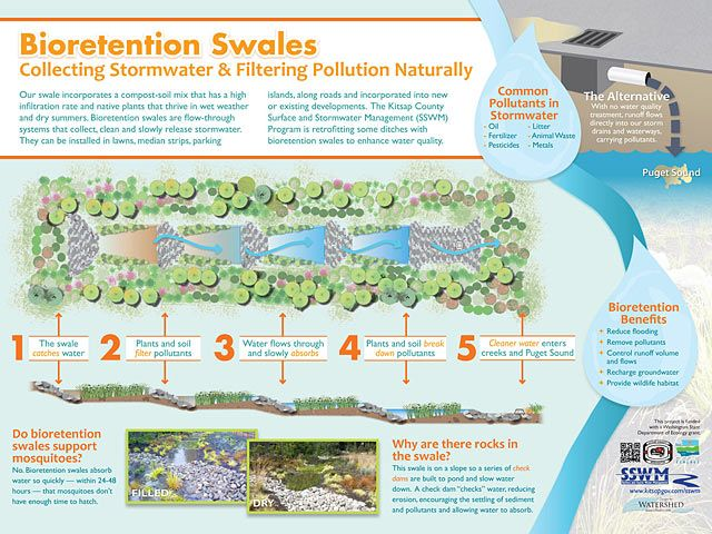 Bioretention Swales Collecting Stormwater And Filtering