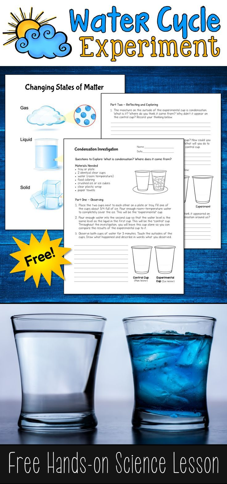 What is condensation and where does it come from? This free Condensation Investigation water cycle experiment is a great way for kids to answer those questions and learn about the water cycle!