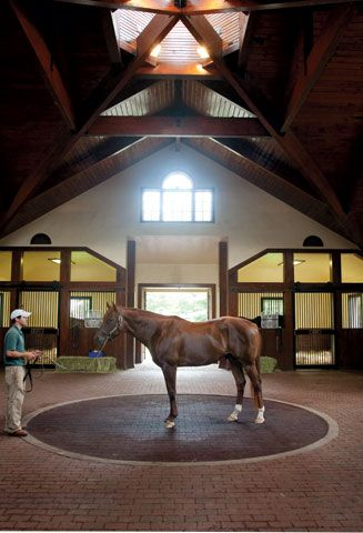 """Pictured here is Smarty Jones at Three Chimneys farm in Lexington.  As you can see, our horses live pretty """"high on the hog""""!  Their barns are sometimes fancier than some homes......and maybe a far sight cleaner too!!  Looks like you could eat off the floor of this beautiful barn."""