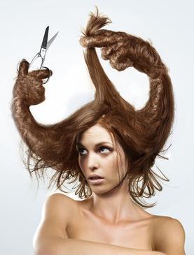 A veces el pelo nos pide a gritos que nos lo cortemos.    The Bad Hair Day by Christophe Heughe