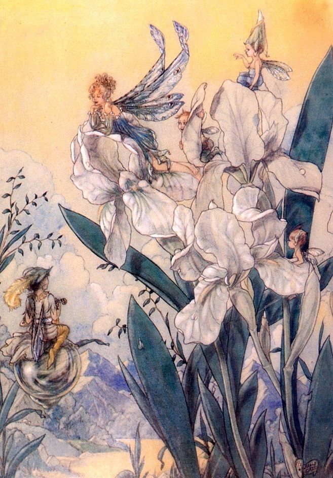 Harold Gaze ~ Fairies in Conversation ~ via