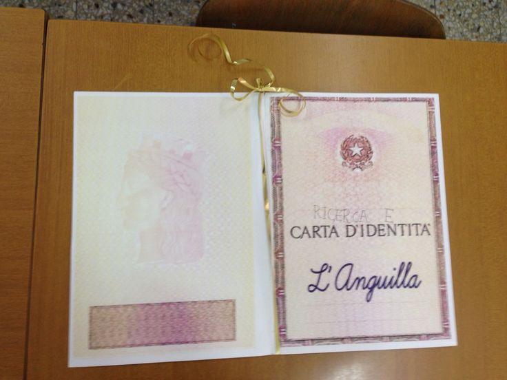 Carta d'identità dell'anguilla
