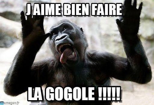 Singe Drole : J Aime Bien Faire, La Gogole !!!!! - by Anonymous