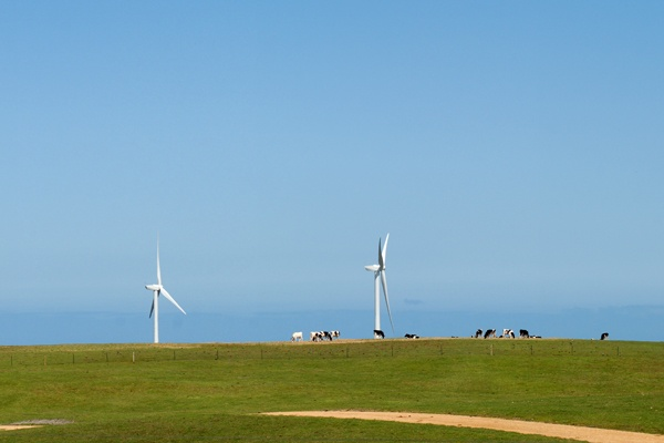 #Wind Farm at Cape Nelson South, Victoria. #renewable #energy