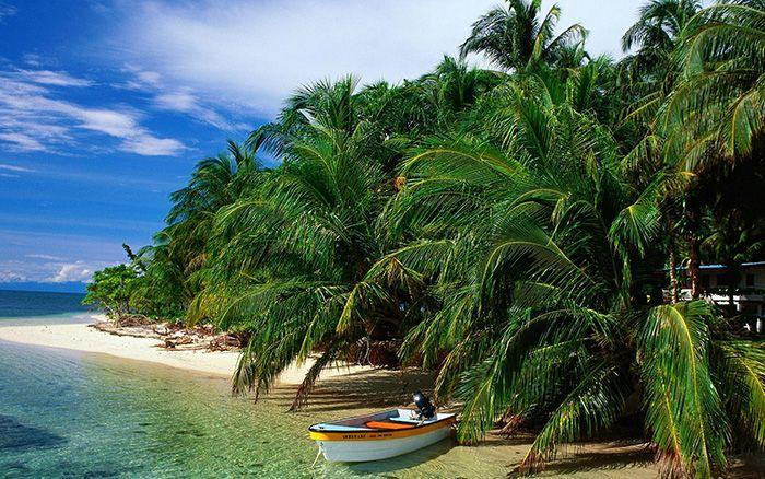 Бали, пляж, пальма, море, лодка