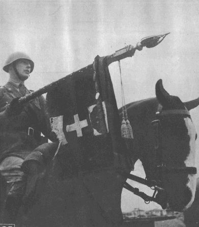 Flag of the Savoia Cavalry regiment, Russia, august 1942