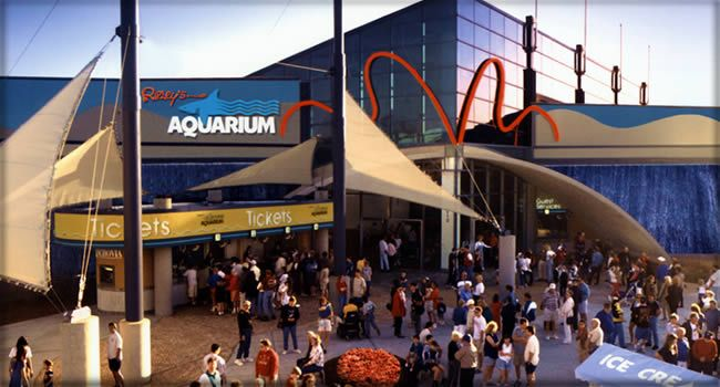 Ripley's Aquarium in Myrtle Beach, South CarolinaAquariums Myrtle, Aquariums Myrl, Favorite Places, Myrtle Beach Aquariums, Myrtle Beach Sc, Roads Trips, Beach Vacations, Myrtlebeachripley Aquariums, South Carolina
