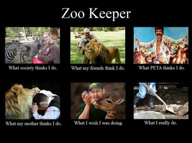 So you want to be a zookeeper? ... #Amusement #Jokes #Funny #Cartoon