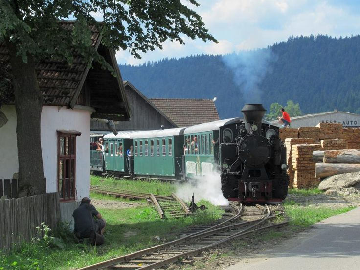 A tourist train powered by a steam locomotive runs 12 kilometers up the Moldovita River from a station near Moldovita Monastery. This narrow gauge forestry line built in 1888 closed in 2001 but was revived by local railway enthusiasts four years later.