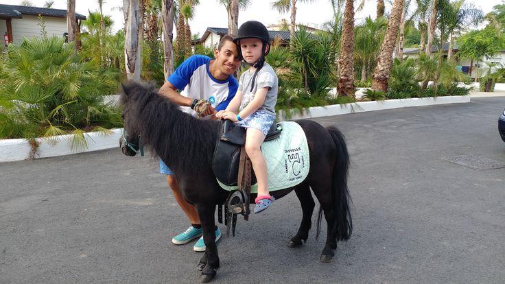 Actividades ponis en La Siesta Salou Resort & Camping