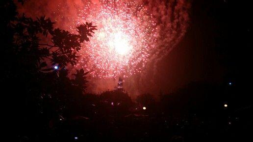 Enjoyed Disneyland this week.