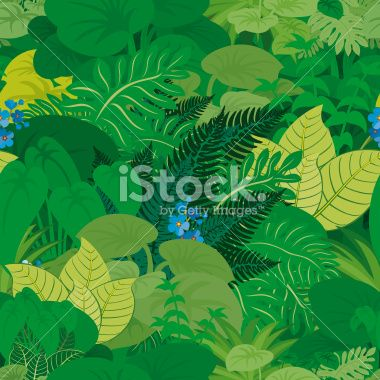 Seamless vector tropical rainforest Jungle background Royalty Free Stock Vector Art Illustration