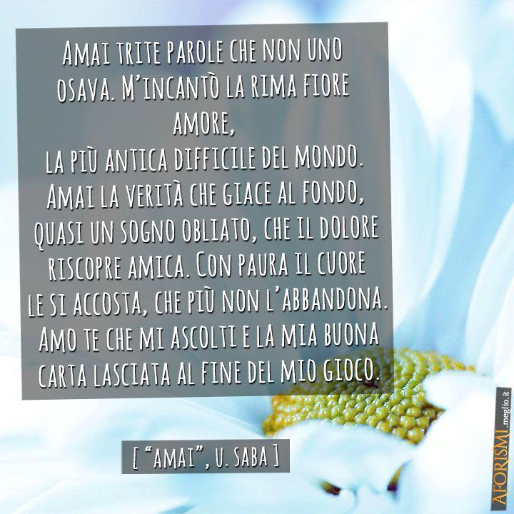 """Analisi, parafrasi e commento alla poesia """"Amai"""", dichiarazione poetica dell'autore Umberto Saba. L'opera è perte di """"Mediterranee"""", dal suo """"Canzoniere""""."""